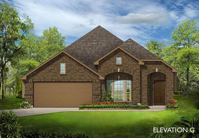 1729 San Donato Lane, McLendon Chisholm, TX 75032 (MLS #14448675) :: The Tierny Jordan Network