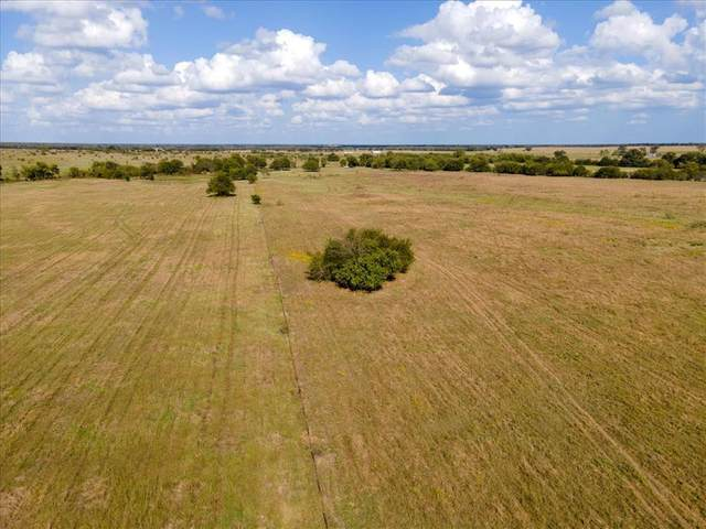 16.81Ac County Road 1610, Lone Oak, TX 75453 (MLS #14449677) :: The Kimberly Davis Group