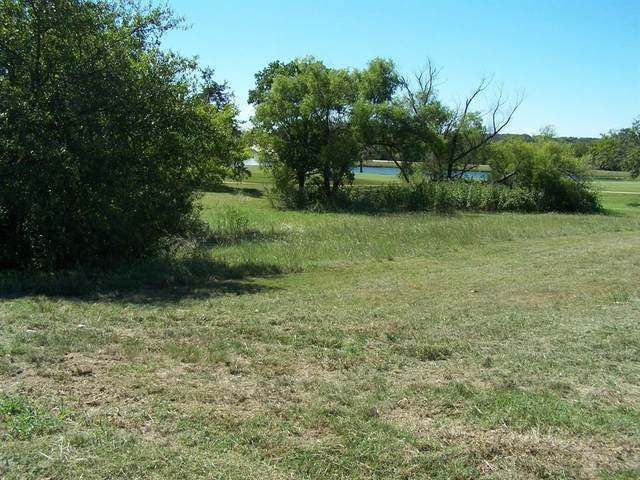 39 Palmer Lane, Pottsboro, TX 75076 (MLS #14449795) :: The Tierny Jordan Network
