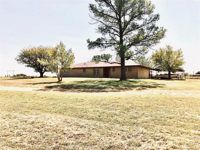 181 County Road 206, Comanche, TX 76442 (#14449857) :: Homes By Lainie Real Estate Group