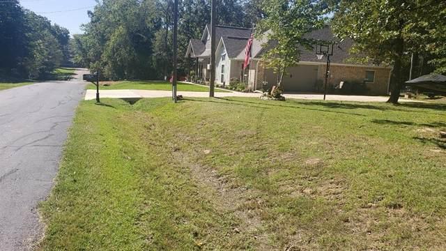 202 First Oak Drive, Enchanted Oaks, TX 75147 (MLS #14450148) :: The Hornburg Real Estate Group