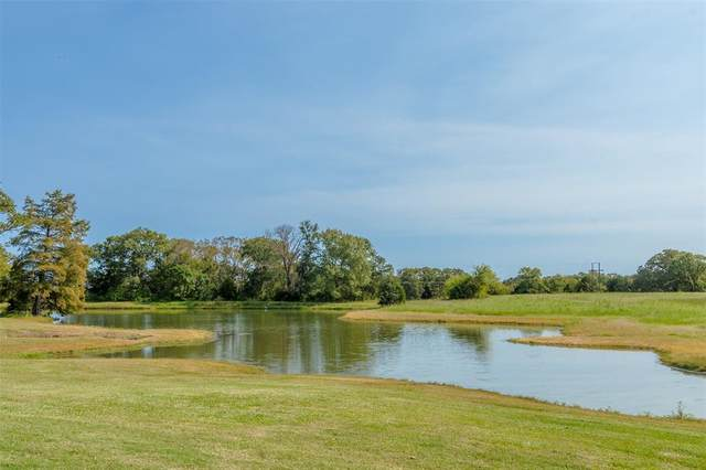 401 Vz County Road 3608, Edgewood, TX 75117 (MLS #14450723) :: The Kimberly Davis Group