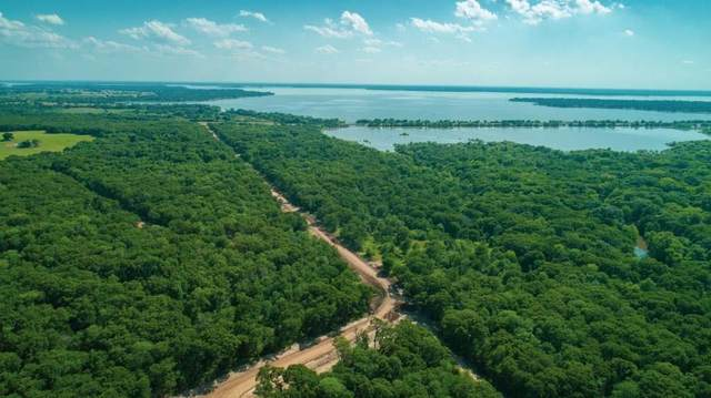 126 Lakeview Trail, Mabank, TX 75147 (MLS #14451237) :: Team Hodnett