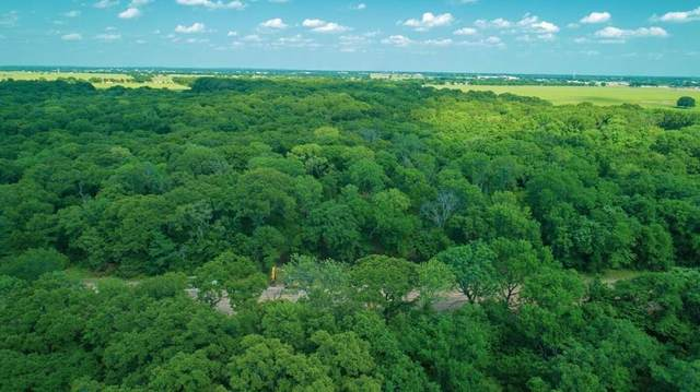 108 Lakeview Trail, Mabank, TX 75147 (MLS #14451249) :: Trinity Premier Properties