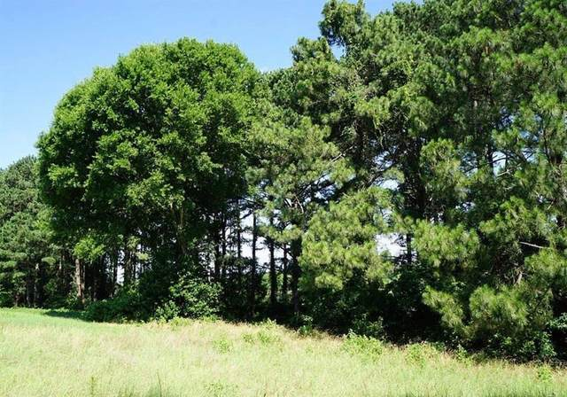 Lot 156 Lago Vista Drive, Athens, TX 75752 (MLS #14451420) :: Feller Realty