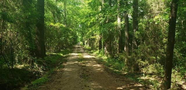 TBD County Road 3216, Pittsburg, TX 75686 (MLS #14451921) :: The Kimberly Davis Group