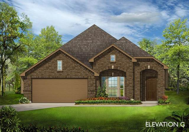 7421 Windy Meadow Drive, Little Elm, TX 76227 (MLS #14452214) :: Keller Williams Realty