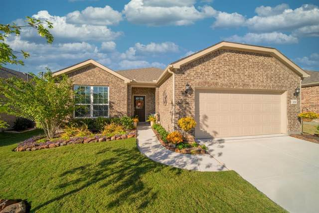 2010 Harbor Pointe Drive, Frisco, TX 75036 (MLS #14452219) :: The Mauelshagen Group