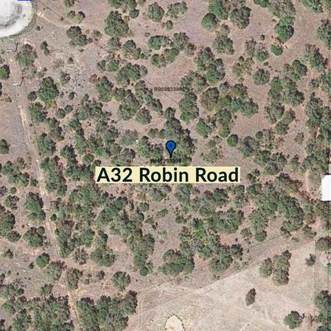 A32 Robin Road, Gordon, TX 76453 (MLS #14452240) :: Front Real Estate Co.