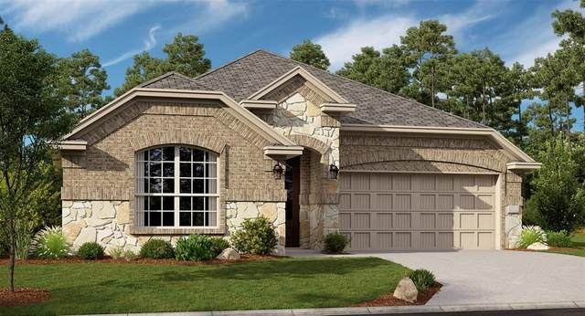 2816 Dancing Flame Drive, Denton, TX 76201 (MLS #14452581) :: The Mauelshagen Group