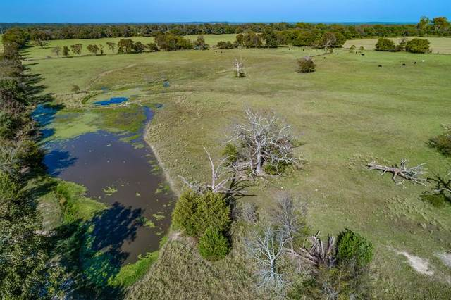 Tract 1 Vz County Road 4412, Van, TX 75790 (MLS #14453845) :: All Cities USA Realty