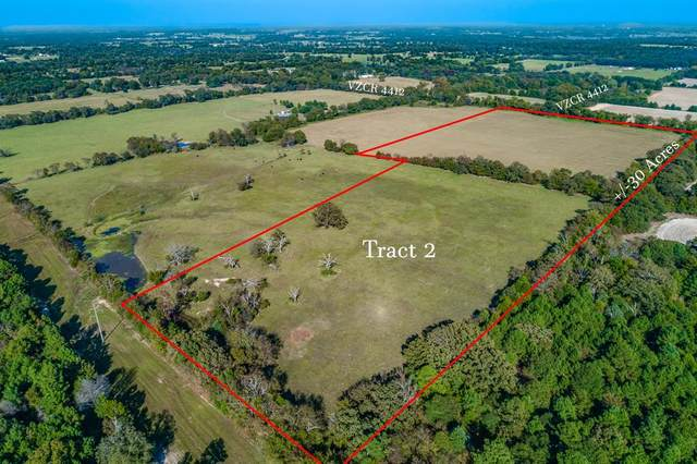 Tract 2 Vz County Road 4412, Van, TX 75790 (MLS #14453920) :: The Kimberly Davis Group