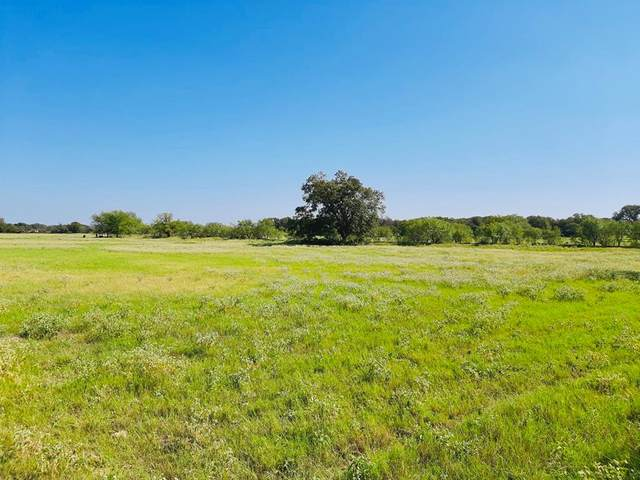 TBD 3 County Road 416, Comanche, TX 76442 (MLS #14453927) :: The Kimberly Davis Group