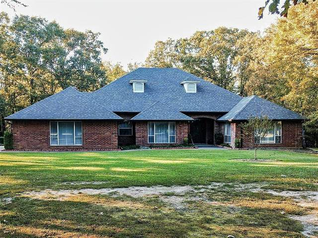 564 County Road 3353, Cookville, TX 75558 (MLS #14454358) :: The Kimberly Davis Group