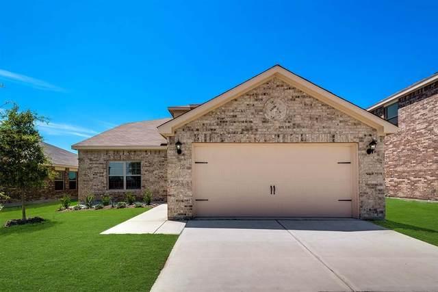 3103 Chillingham Drive, Forney, TX 75126 (MLS #14454402) :: The Tierny Jordan Network