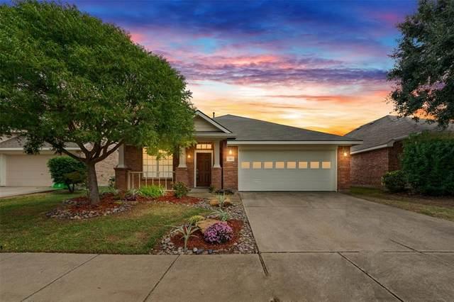 213 Redhead Drive, Little Elm, TX 75068 (MLS #14454426) :: The Good Home Team