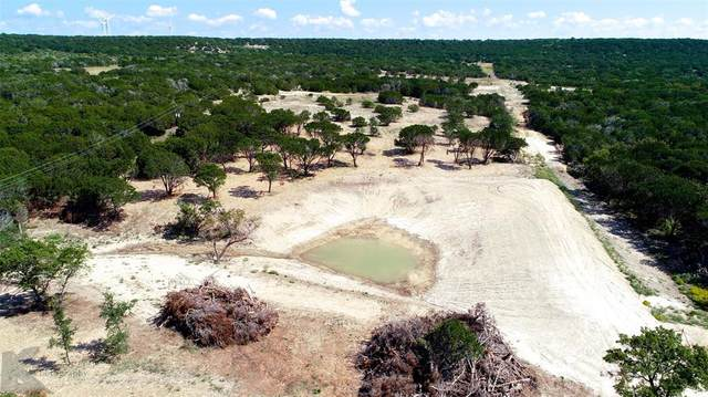 TBD County Rd 194, Ovalo, TX 79541 (MLS #14454510) :: The Kimberly Davis Group