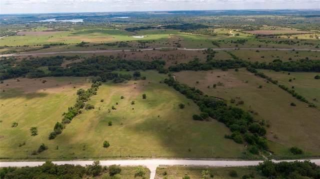 Lot 18 Eagle's Perch, Gainesville, TX 76240 (MLS #14454999) :: The Mauelshagen Group