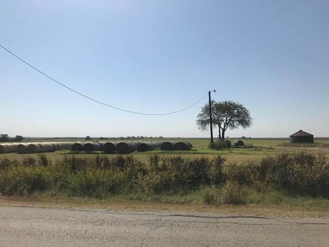 TBD Berend Road, Pilot Point, TX 76258 (MLS #14455197) :: The Daniel Team