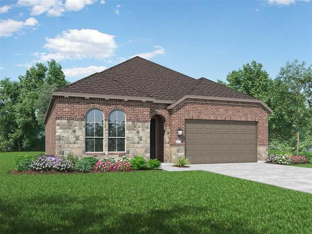 812 Pelican Drive, Sherman, TX 75092 (MLS #14455479) :: All Cities USA Realty