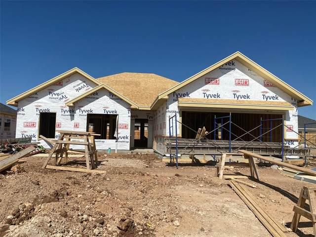 326 Sophia Lane, Abilene, TX 79602 (MLS #14455823) :: The Mauelshagen Group