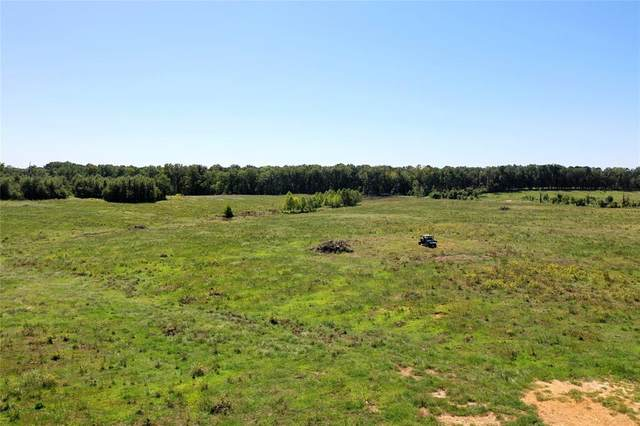 TBD County Rd 4621, Annona, TX 75550 (MLS #14455908) :: The Kimberly Davis Group