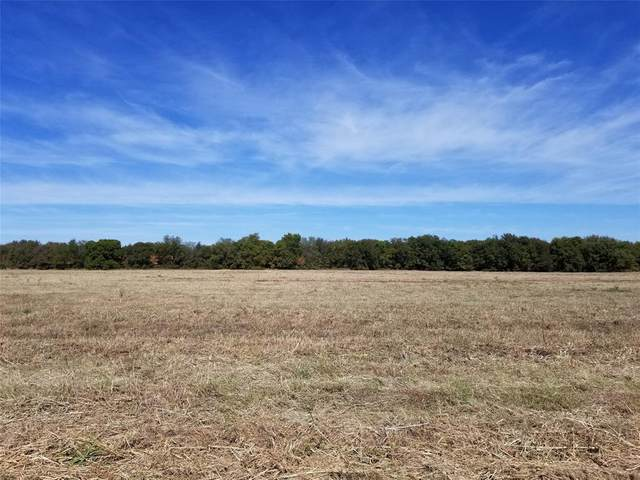 TBD E Hwy 56, Savoy, TX 75479 (MLS #14456000) :: All Cities USA Realty