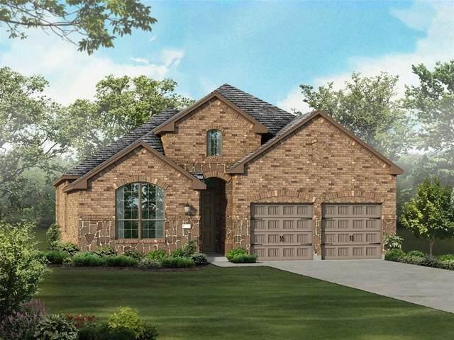 920 Lady Bird Drive, Mckinney, TX 75071 (MLS #14456087) :: Potts Realty Group
