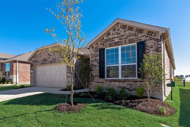 920 Memorial Drive, Little Elm, TX 76227 (MLS #14456432) :: The Tierny Jordan Network