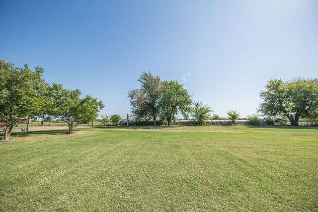 1089 W Farm Road 71 W, Sulphur Springs, TX 75482 (MLS #14456527) :: All Cities USA Realty