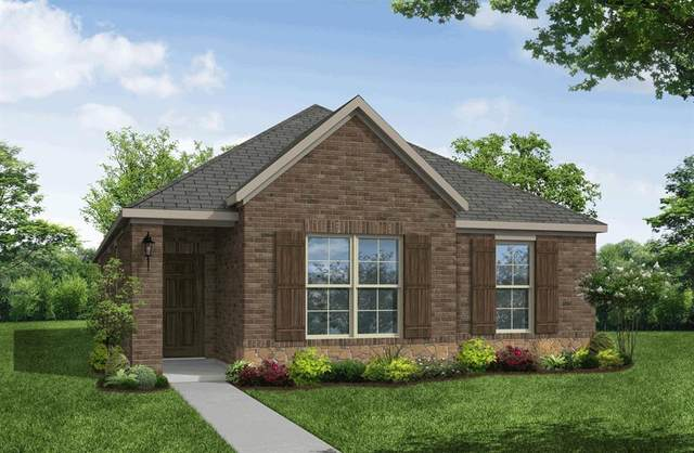 2033 Miramar Drive, Little Elm, TX 75068 (MLS #14456634) :: The Good Home Team
