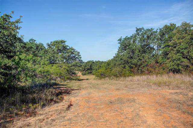 TBD Cr 3852 #2, Poolville, TX 76487 (MLS #14456802) :: Robbins Real Estate Group