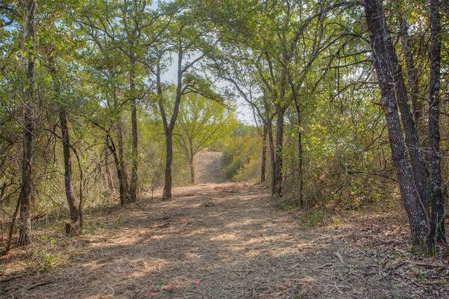 TBD Hwy 199 #8, Poolville, TX 76487 (MLS #14456819) :: Robbins Real Estate Group