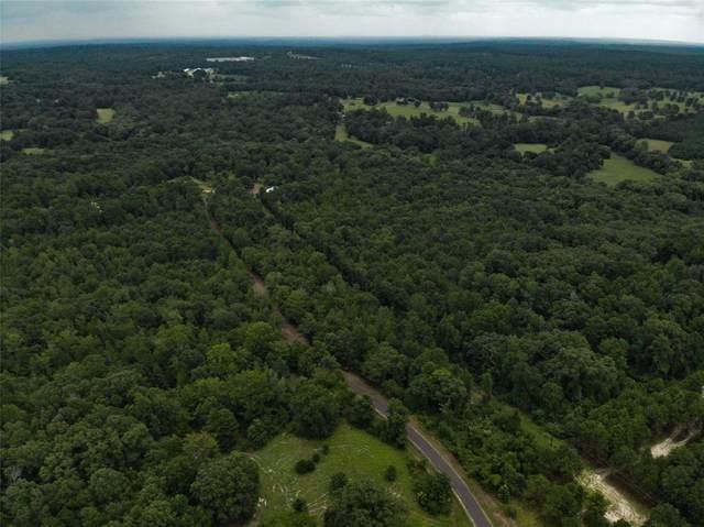 TBD County Road 4536, Winnsboro, TX 75494 (MLS #14456991) :: The Hornburg Real Estate Group