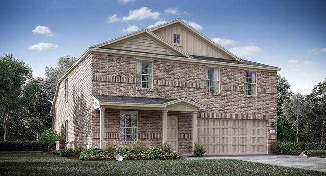 4015 Renee Drive, Dallas, TX 75227 (MLS #14457693) :: Robbins Real Estate Group