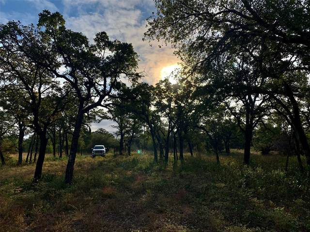TBD Live Oak Road, Santo, TX 76472 (MLS #14457962) :: The Kimberly Davis Group