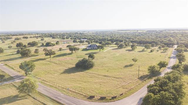 7516 Ellis Drive, Millsap, TX 76088 (#14458038) :: Homes By Lainie Real Estate Group