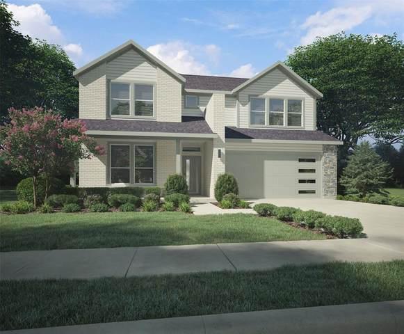 452 Deer Canyon Way, Princeton, TX 75407 (MLS #14458611) :: The Kimberly Davis Group