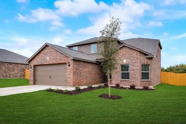 304 Golden Sands Lane, Princeton, TX 75407 (MLS #14459015) :: The Kimberly Davis Group