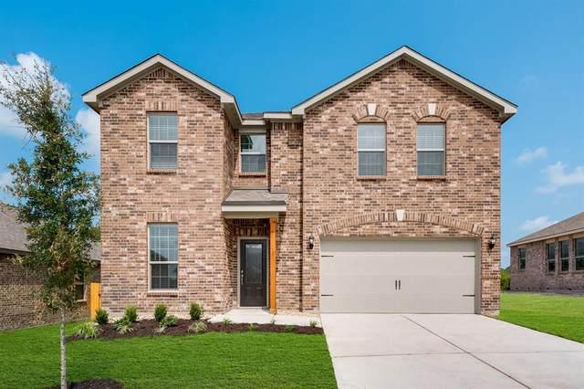 2011 Dahlia Way, Princeton, TX 75407 (MLS #14459046) :: The Kimberly Davis Group