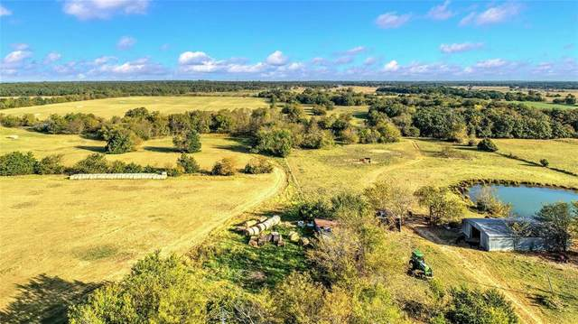 507 County Road 217, Collinsville, TX 76233 (MLS #14459424) :: The Kimberly Davis Group