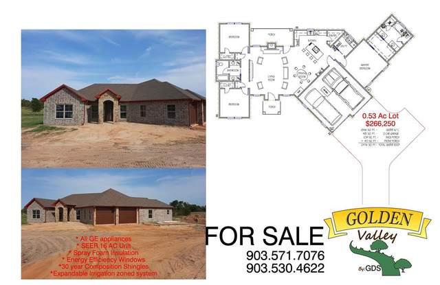 307 Cr 1610, Alba, TX 75410 (MLS #14459629) :: Real Estate By Design
