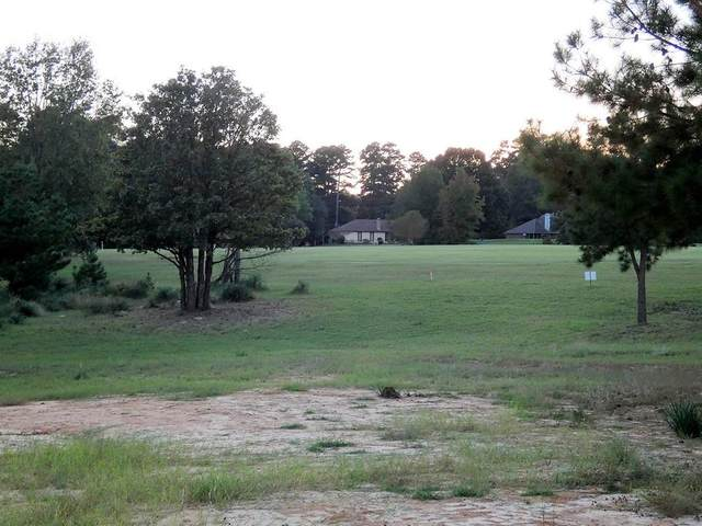 LOT525R Golfing Green Cove, Holly Lake Ranch, TX 75765 (MLS #14460215) :: The Kimberly Davis Group