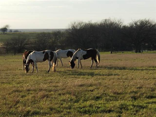 3926 County Road 337, Gainesville, TX 76240 (MLS #14460383) :: The Good Home Team
