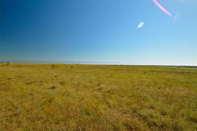 0 County Road 2800, Lometa, TX 76853 (MLS #14460419) :: The Good Home Team