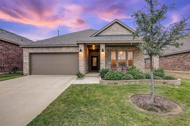 904 Lake Cypress Lane, Little Elm, TX 75068 (MLS #14461169) :: Post Oak Realty