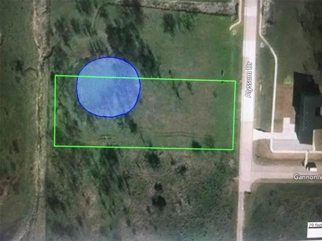 2259 Alyssum #1956, Cedar Hill, TX 75104 (MLS #14461282) :: Real Estate By Design