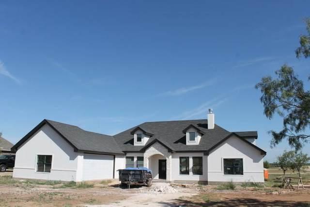 302 Filly Road, Abilene, TX 79606 (MLS #14461348) :: Real Estate By Design