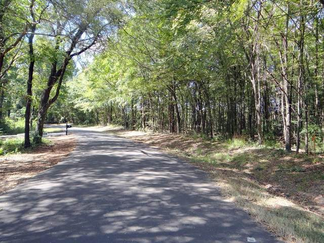 Lot 11 County Road 4870, Winnsboro, TX 75494 (MLS #14461691) :: All Cities USA Realty