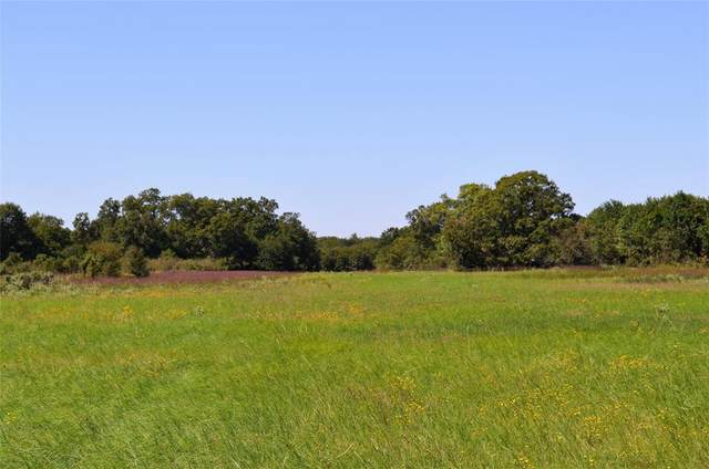 18880 County Road 4072, Kemp, TX 75143 (MLS #14461822) :: Potts Realty Group